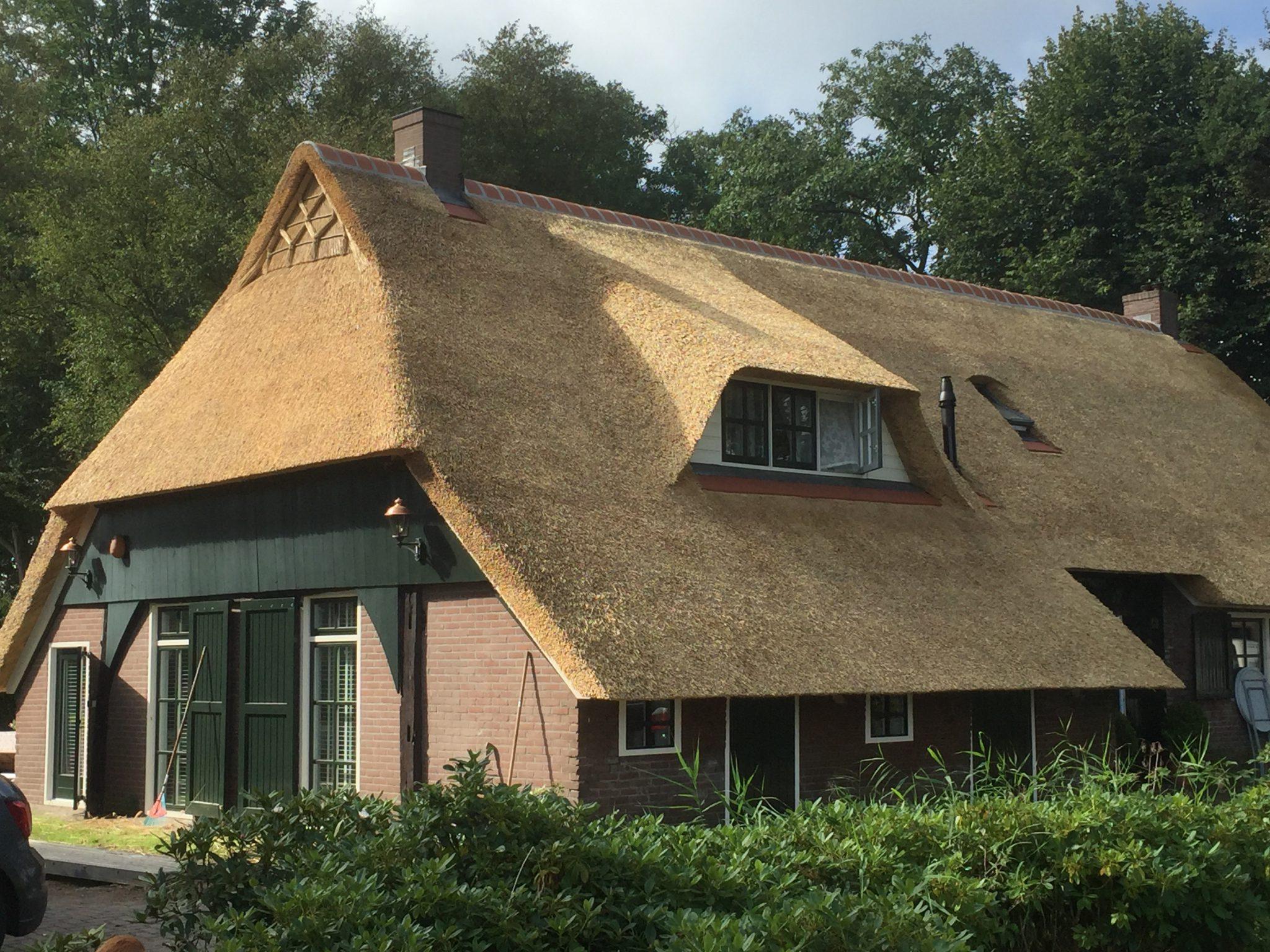 Rieten dak plaatsen?