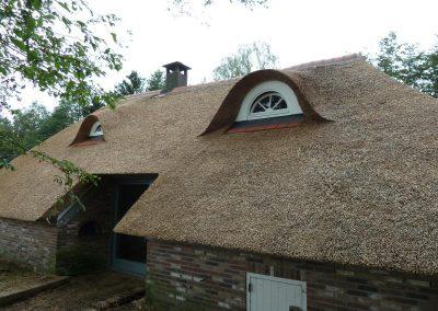 rieten dak met twee ramen